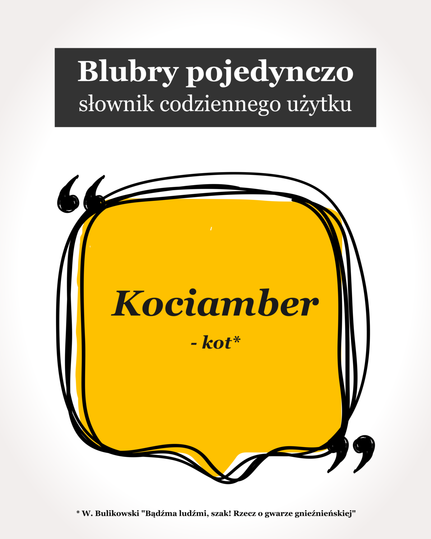 Blubry: Kociamber